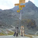 an der Prafleuri-Hütte auf 2662 m