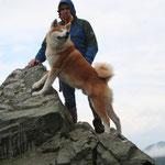 Gipfel auf dem Pferdskopf