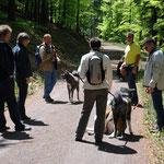 Wanderung durch den Pfälzer Wald