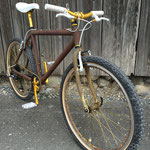 Nandrolon, Rat Style Bike