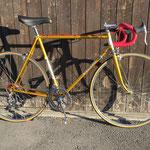 NANDROLON, Vintage Vicini Racer