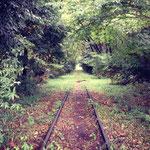 西武安比奈線 -緑のトンネル-