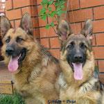 Father & daughter: Gordan von der Bastillie & Ritza von Valmarhof