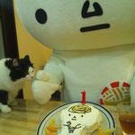 オカピおばさんが1歳のお誕生日のケーキを作ったツル!いやしんぼ猫マーが、ケーキを狙ってるツル!