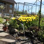 Metall Spalier Garten