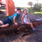Krokodile in Holz