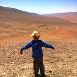 Klara und Tim erforschen solange die Wüste