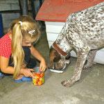 Der Wachhund Cristobal und Klaras Freund