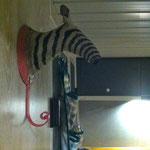 Ein Zebra im Zebra...