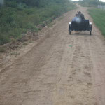 unser Gastgeber und sein Pferdefuhrwagen