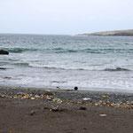 Abfallidylle am Strand
