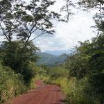 der Weg aus dem Pantanal