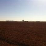 Felder über Felder