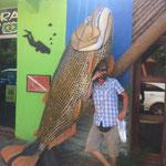 Mit Fischen kann man gut sprechen