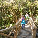 Wunderschöne trails müssen entdeckt werden