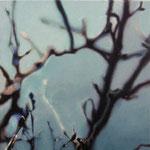 MIrada discreta XVI, óleo sobre lienzo, 30x30 cms