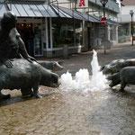 Schweine brunnen