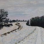 Winter im Steinhorster Becken
