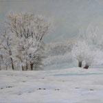 Frischer Schnee im Moor