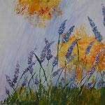Lavendelblüte im Sonnenlicht