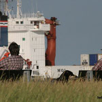 In Cuxhaven Schiffe beobachten