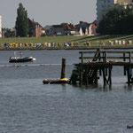 Sommer, Baden, Grünstrand in der Grimmershörnbucht in Cuxhaven