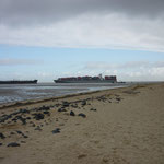 Viel Schiffsverkehr auf der Elbe vor Cuxhaven