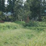 溜池脇の墓地。ここに塚があったのでしょうか。