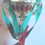 Кубок и медаль III место Чемпионата Москвы категория Мастера.