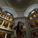 National Museum of Natural History [Washington D.C./USA]