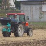 肥料ふり(土づくりを行っています)