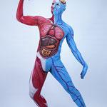 Body Painting Human Sistem