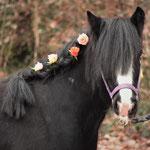 Wenn das keine hübsche Mini-Tinker-Dame ist! Pretty Clairchen!