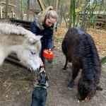 Die Kinder haben Pferdeleckerlies gebacken und den Ponys gebracht