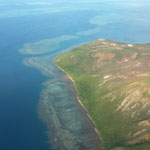 Récifs coraliens