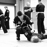 Shaolin Kempo meets Chan Shaolin Si en Dju Su. Rotterdam 18 maart 2017.