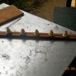 Cadre d'élevage (1 barrette) placée dans une hausse quelques jours avant la mise des larves.