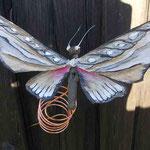 Magnet-Schmetterling