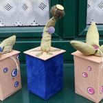 2. Runde BOXenKAMPF: bepflanzte Boxen