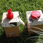 Kater Leckerschlecker mit upcycling.MAUS.Box