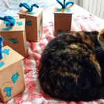3. Runde BOXenKAMPF: Feli mit den neuen Mausboxen