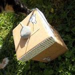 upcycling.MAUS.Box und Felipfote