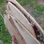 ... und gibt ein gutes Brennholz ab :-)