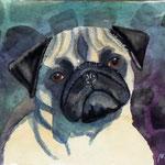 Bild, Mopsporträt in grün, Aquarell 50x60cm Sfr. 450.- ungerahmt