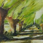 Weidenweg, Acryl auf Papier, 40 x 60