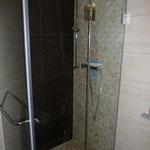 Dusche im Bad EG