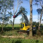 Kraan met klem boom