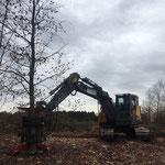 Kraan en forest cutter