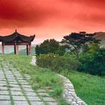 日本旅游攻略,ALEXANDER-2020年东京奥运会,JAPAN,日本第一酵素,ALEXANDER&SUN,纳豆精,纳豆激酶日本旅游指南,-JAPAN