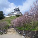 日本旅游攻略,ALEXANDER-2020年东京奥运会,JAPAN,日本第一酵素,ALEXANDER&SUN,纳豆精,纳豆激酶日本旅游指南,-掛川城